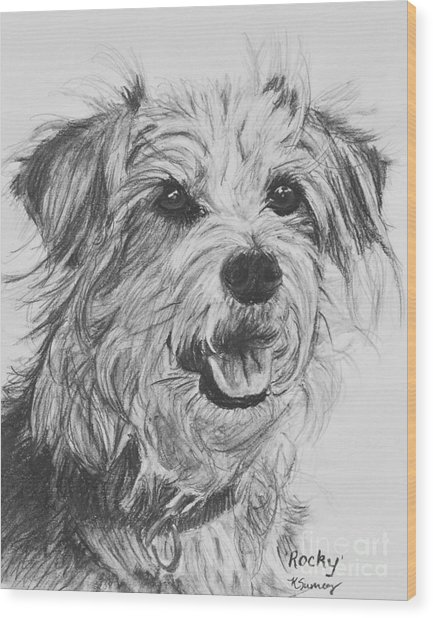 Scruffy Terrier Dog Drawing Wood Print