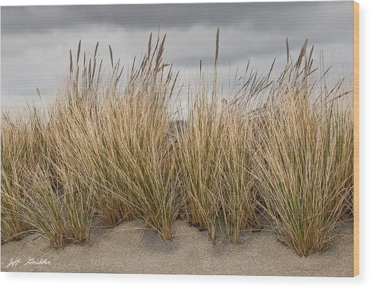 Sea Grass And Sand Wood Print
