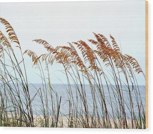 Sea Oats And Serenity Wood Print