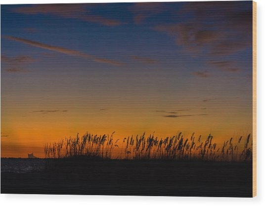 Sea Oats At Twilight Wood Print