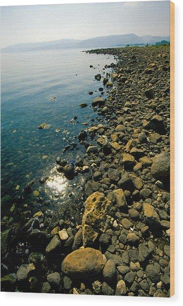 Sea Of Galilee Shore Wood Print
