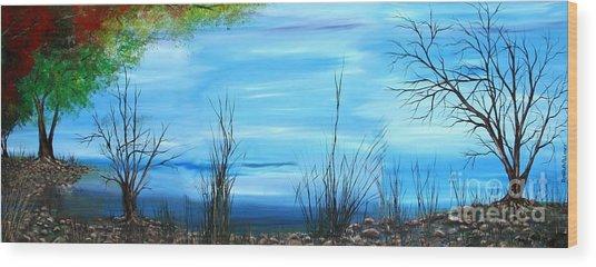 Sea Of Galiley Shore Wood Print by Roni Ruth Palmer