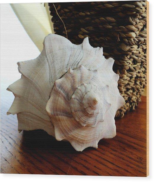 Sea Shell And Basket Wood Print