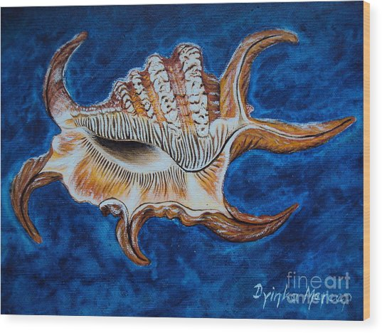 Sea Shell Original Painting Oil On Canvas No.3. Wood Print by Drinka Mercep