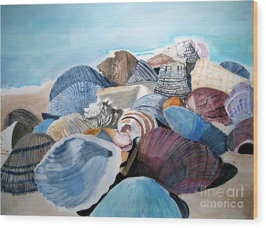 Sea Shells Wood Print
