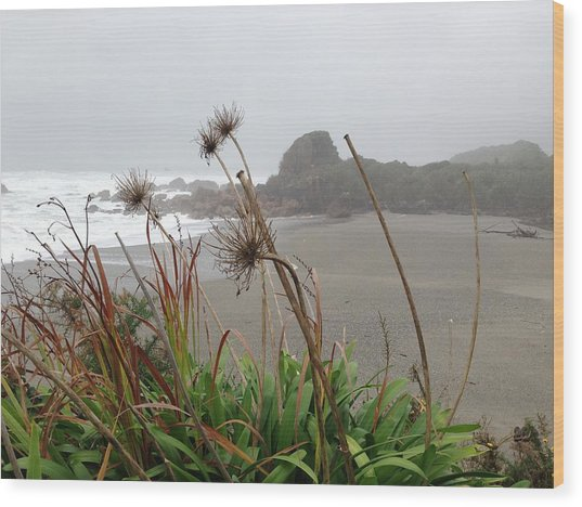 Sea Shore Wood Print by Ron Torborg