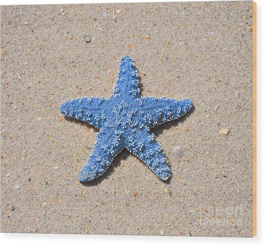 Sea Star - Light Blue Wood Print