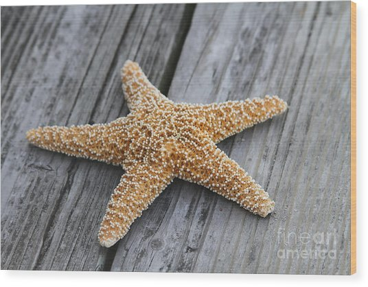 Sea Star On Deck Wood Print
