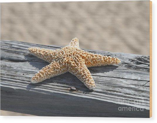 Sea Star On Railing Wood Print
