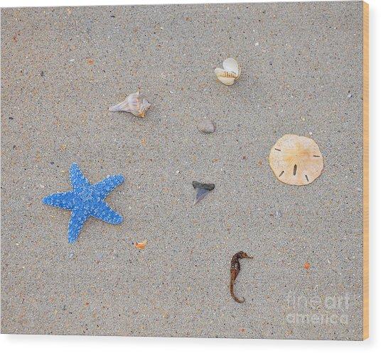 Sea Swag - Light Blue Wood Print