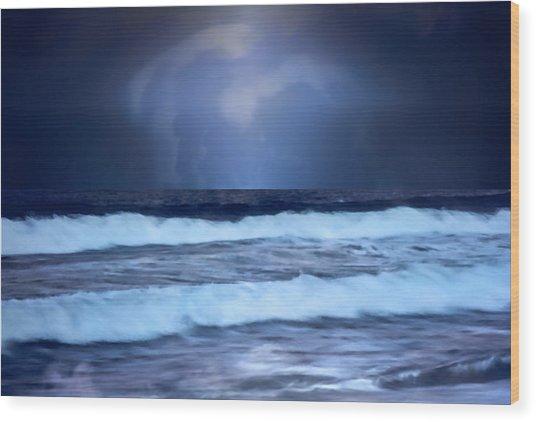 Sea Worlds Wood Print