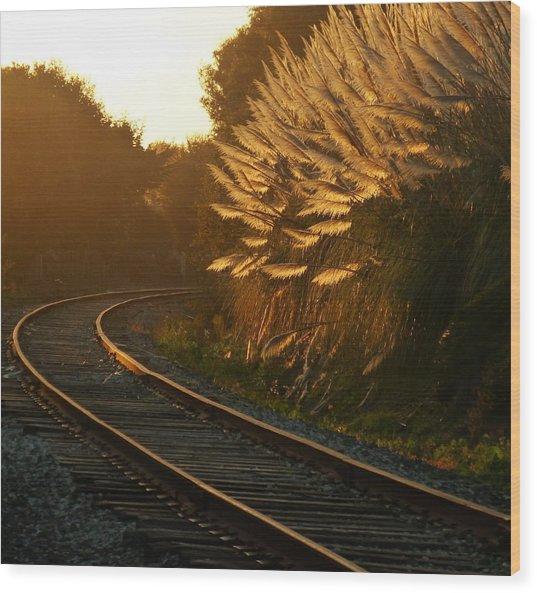 Seacliff Tracks At Sunset Wood Print