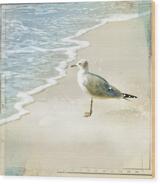 Seagull 2 Marco Island Wood Print