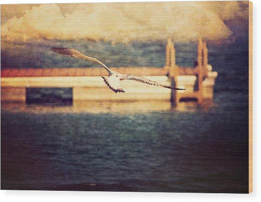 Seagull Flying Wood Print