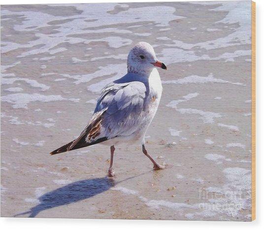 Seagull On The Run Wood Print