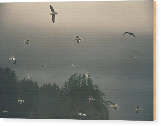 Seagulls In A Storm Wood Print