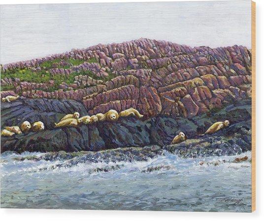 Seal Island Wood Print by Thomas Michael Meddaugh