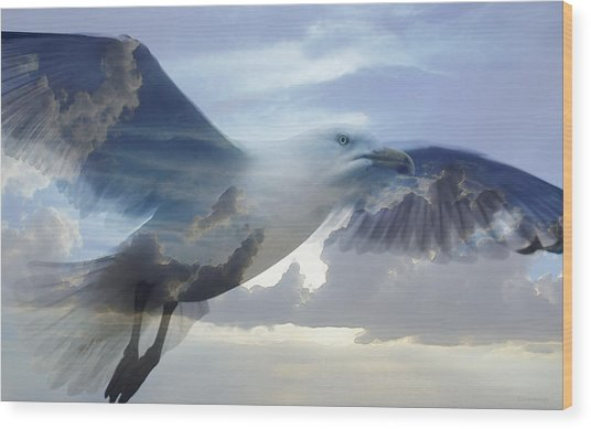Searching The Sea - Seagull Art By Sharon Cummings Wood Print