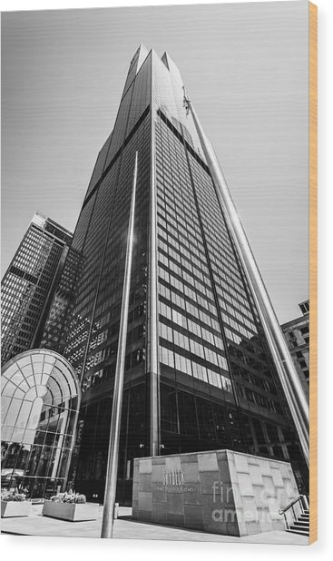 Sears Willis Tower Chicago Black And White Picture Wood Print by Paul Velgos