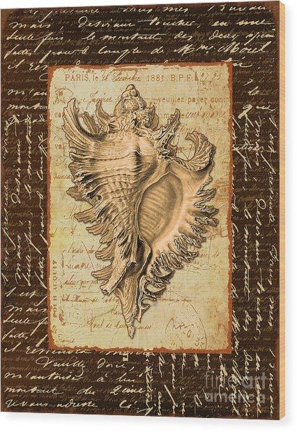 Seashell In Sepia I Wood Print by Marilu Windvand