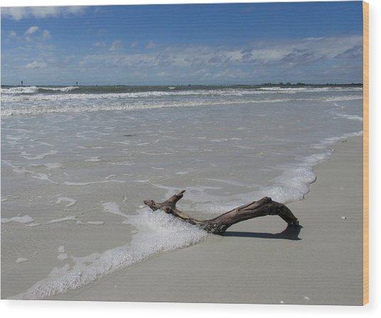 Seashore Driftwood Wood Print by Rosie Brown