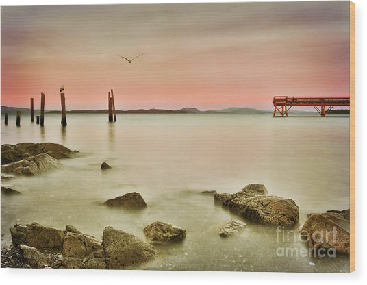 Seaside Pier  Wood Print