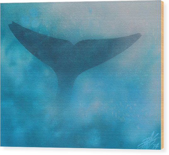 Seasoned Or Blue Whale Fluke Wood Print