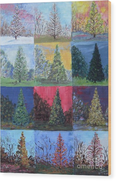 Seasons Of A Dawn Redwood - Sold Wood Print