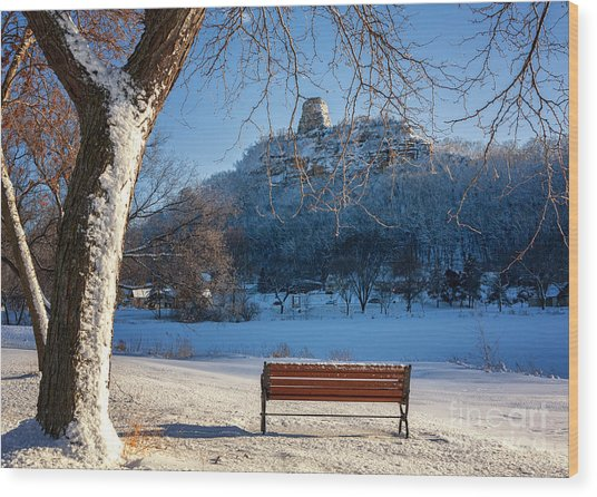 Wood Print featuring the photograph Seat With A View In Winter by Kari Yearous
