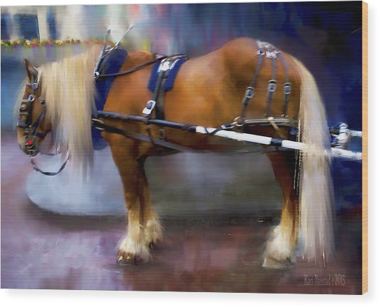 Seattle Carriage Horse Wood Print