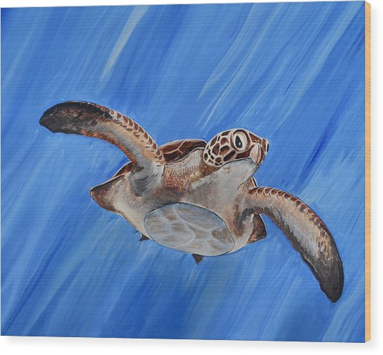 Seaturtle Wood Print