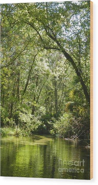 Secret Stream  Wood Print