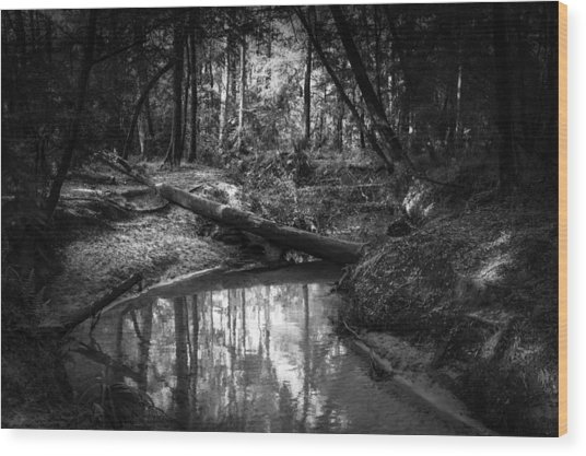 Secluded Creek Wood Print
