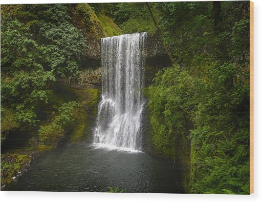 Secluded Falls Wood Print