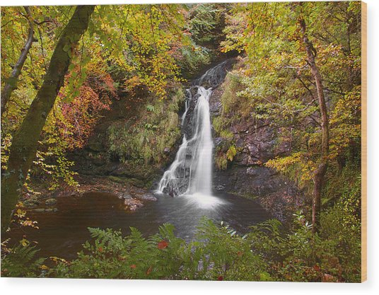 Secluded Waterfall Wood Print