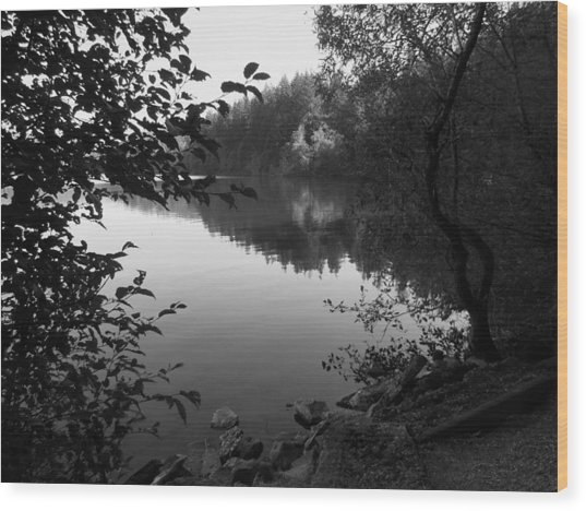 Second Lake Padden Reflection In Black And White  Wood Print