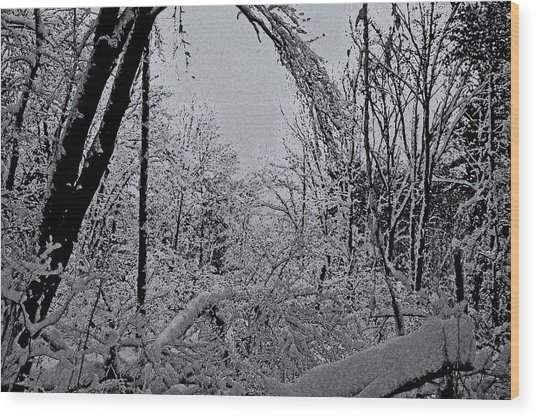 Second Winter Storm Wood Print by Mary Anne Williams