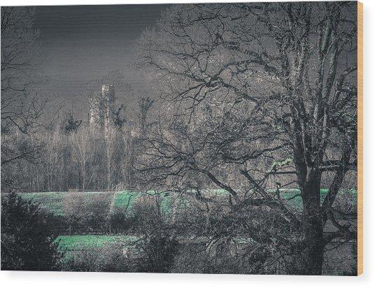 Secret Castle Wood Print