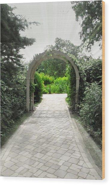Secret Garden Wood Print by Andrea Dale