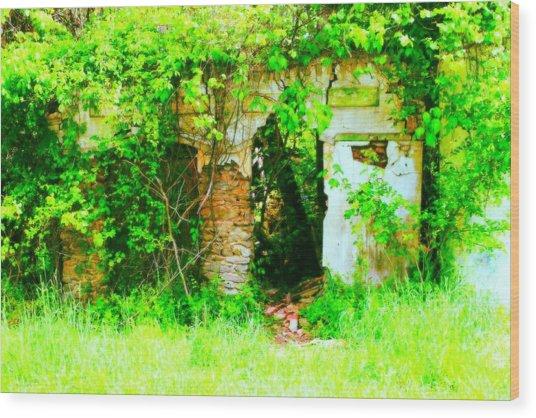 Secret Garden Wood Print by Sarah E Kohara