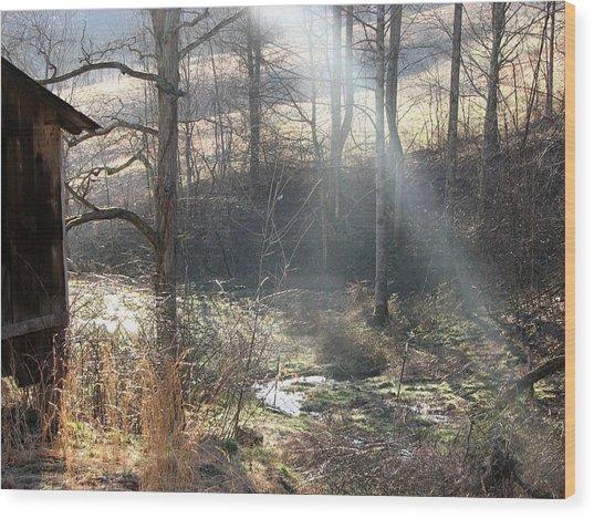 Secret Hollow Wood Print by Carol Hoffman