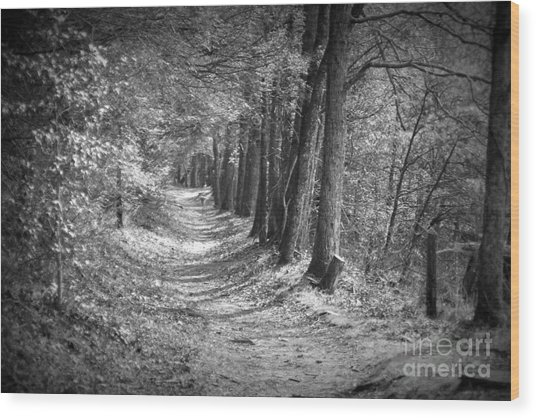 Secret Pathway Wood Print