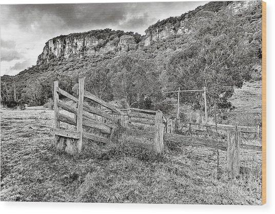 Secret Valley Wood Print by David Benson