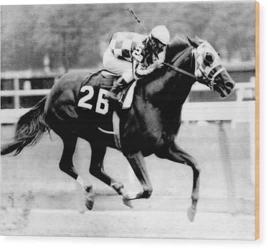 Secretariat Vintage Horse Racing #12 Wood Print by Retro Images Archive