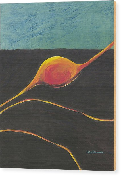 Seed Nucleus Wood Print