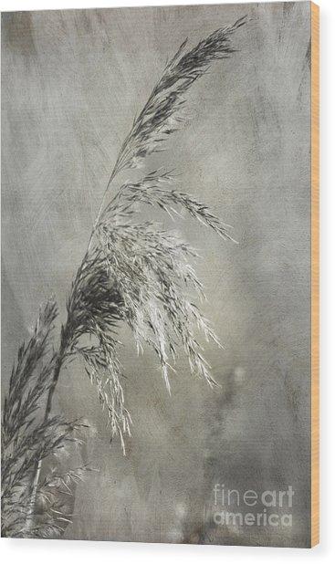 Seeded Grass Wood Print