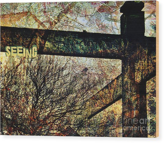 Seeing Wood Print by Currie Silver