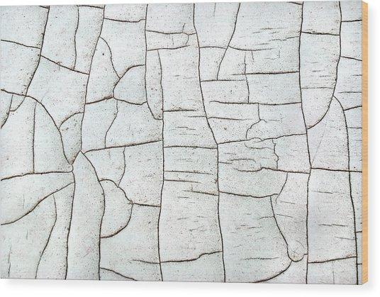 Segments Wood Print