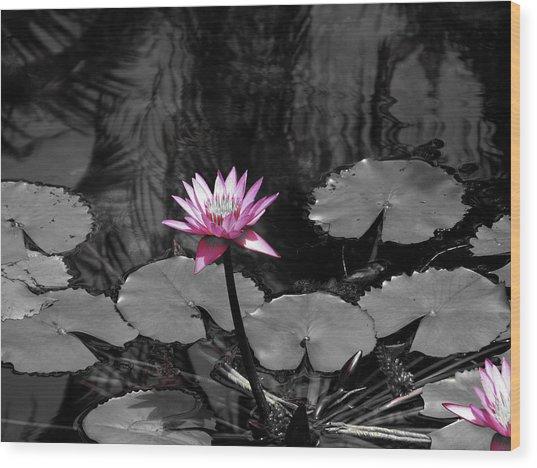 Selective Lily Wood Print