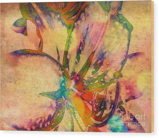 Springtime Floral Abstract Wood Print